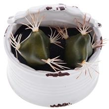 Conserve with Green Cactus Decorative