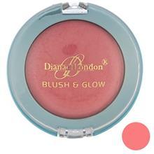 رژ گونه دایانا سری Blush And Glow  مدل Apricot Mist 04