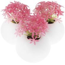 Pink Calendula Flower Pot and Flower