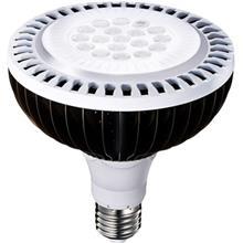 لامپ ال اي دي 17 وات اي ديتا مدل PAR38