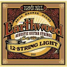 Ernieball 2010 Acoustic Guitar String