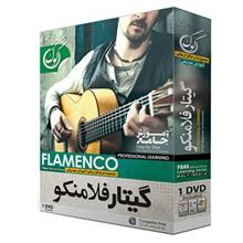 Pana Flamenco Guitar Training