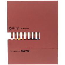 مداد رنگي 12 رنگ فکتيس مدل Gallery Collection