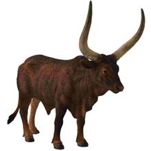 Collecta Ankole Watussi Bull 88648 Size 2 Toys Doll