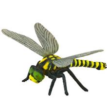 Collecta Golden Ringed Dragonfly 88350 Size 1 Toys Doll