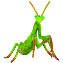 Collecta Praying Mantis 88351 Size 1 Toys Doll