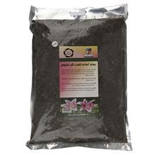 Golbarane Sabz Bastare Kesht Lilium Flower 4 Kg Fertilizer