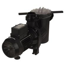 Pump Ebara SWT 200M Centrifugal Self-Priming Electric Pump For Pools