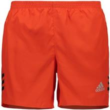 Adidas Performance Shorts For Men