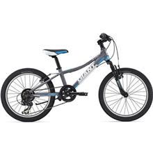 دوچرخه کوهستان جاينت مدل XtC Jr سايز 20
