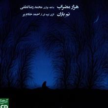 آلبوم موسيقي کنسرت هزار مضراب اثر محمدرضا لطفي