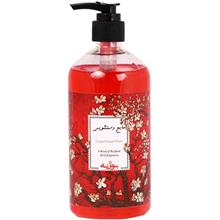 Bojeneh Liquid Hand Wash Red 500g