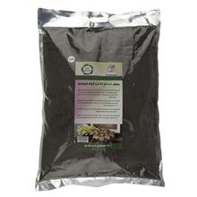 Golbarane Sabz Bastare Kesht Fittonia 4 Kg Fertilizer