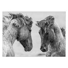 تابلوی ونسونی طرح Gray Horses سایز 30x40