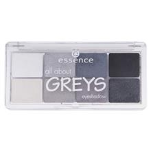 سايه چشم اسنس مدل all about Grays شماره 04