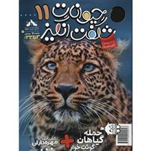 Amazing Animals Magazine - No 11