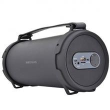 Astrum SM310 Speaker