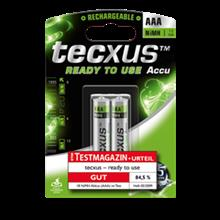 tecxus AAA / RtU 800 mAh Battery