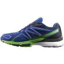کفش مخصوص دویدن مردانه سالومون مدل X-Scream 3D GTX