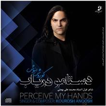 Percive My Hands by Kourosh Anoosh Music Album